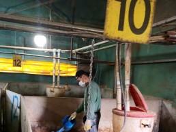 진안초원흑돼지농장, 청정축산환경대상 전북 예선서 최우수상