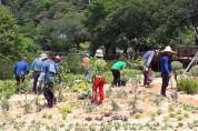정읍시, 향기 정읍 만드는 '2020년 시민정원사 교육' 개시