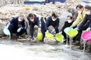 정읍시, 은어 치어 방류로 생태계 보호·산업적 발전 유도'일석이조'