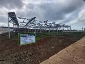 영농형 태양광, 전력생산과 농사를 동시에
